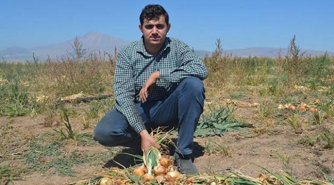 Kayseri'de ilk defa soğan eken çiftçi Yılmaz: