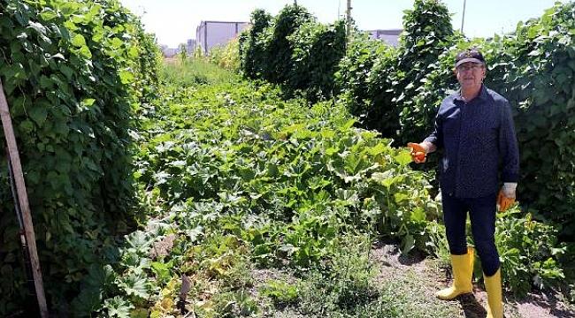 Kayserili çiftçi, 130 çeşit sebze yetiştirdi