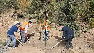 Talaslı Muhtarlar Ali Dağı'na ağaç dikti