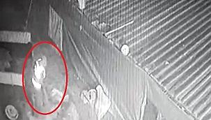 Koyun hırsızlığı, güvenlik kamerasında