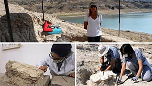 Kayseri'de kaplumbağa fosili, sergiye hazırlanıyor