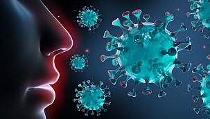 Koronavirüs salgını medyada 69 milyon haber ile zirvede