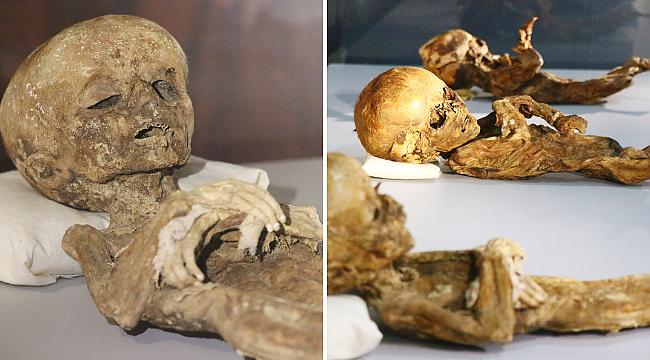 9. ve 11. yüzyıla ait insan ve hayvan mumyaları