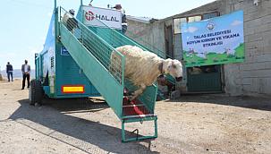 Koyun banyosu aracı çiftçilerin yüzünü güldürdü