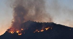 Kayseri'de çıkan yangında 55 dönüm ekili alan küle döndü